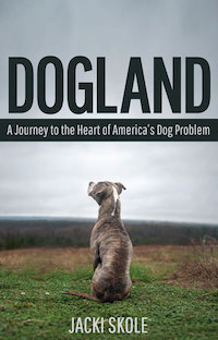 cover of Dogland