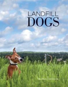 Landfill cover2