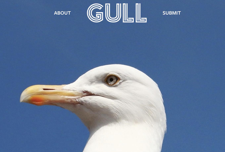 Gull Literary Journal